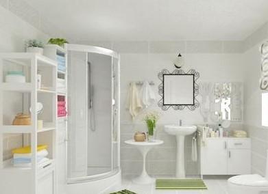 2012冬季淋浴房装修效果图