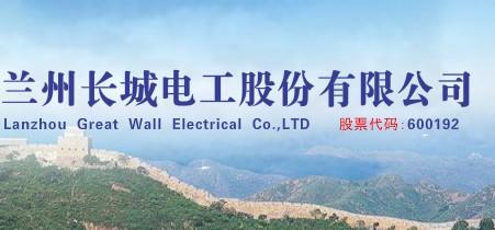 长城电工对子公司安全生产工作进行现场督查