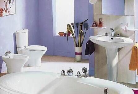 中小卫浴企业品牌建设成难题 网络营销成突破口