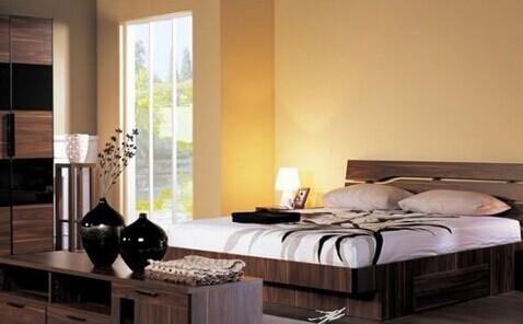衣柜企业满足消费者审美需求 注重设计