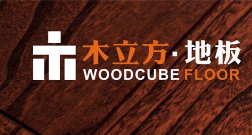 木立方聚焦央视四大频道,展示品牌强大的魅力