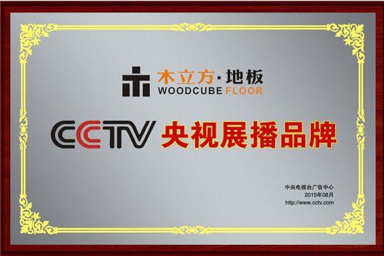木立方强势登陆央视 实现品牌跨越式增长