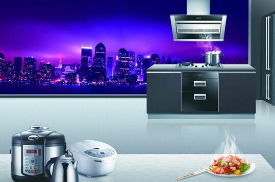 厨卫电器品牌哪家好 你的厨卫真的和你心意吗?