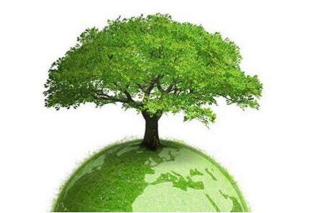 世界环境日:践行绿色生活 生产健康、生态木门