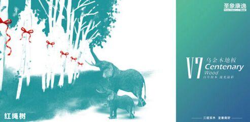 圣象V7乌金木地板红绳树:敬重生命,享受自然