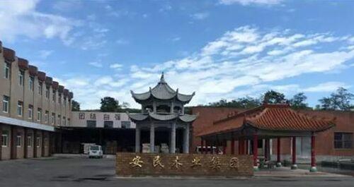 展辰家具漆专业培训团队助力辽宁丹东安民木业涂装升级