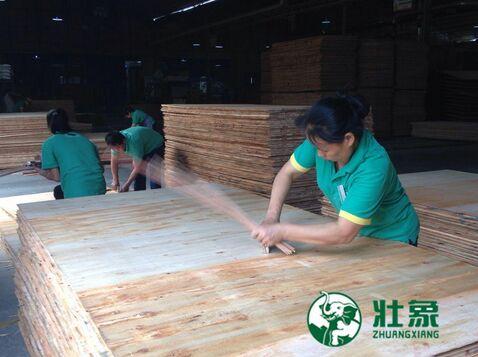 中国十大生态板,壮象用质量成就
