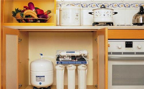 过年辞旧迎新   你家的净水器也该清清了