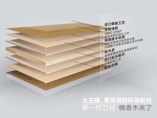 中国十大品牌生态板大王椰 改写板材新时代