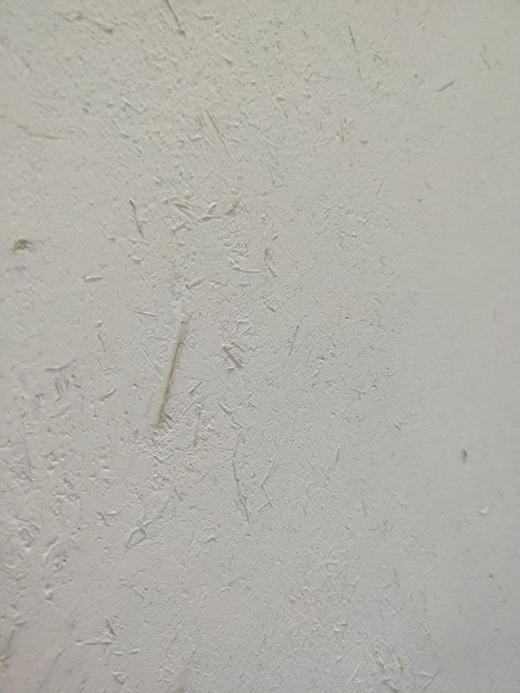 新时代壁材生力军 五分钟带您走进卫乐士硅藻泥