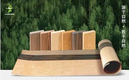 兔宝宝著名木门品牌:树节里话环保