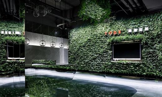 陶德·负离子瓷砖生态体验馆   宋国梁:如森如林 空澈心境