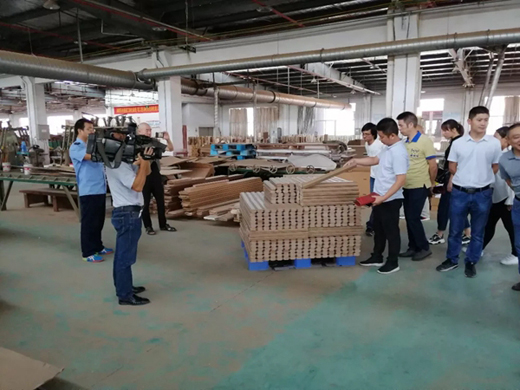 金凯木门按照蓝色乐活理念 为客户提供高品质产品及服务