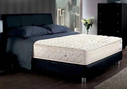 脊柱与床垫  床垫的软硬度不是最重要的
