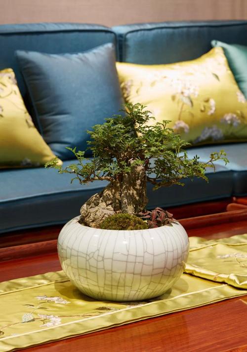 闻香识红木,寻找治愈家具的味道