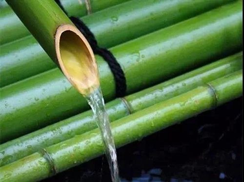 德华生态板雷梅:播种文化的种子