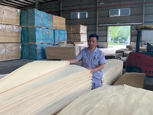 """德华生态板徐伟良:科技木生产线的""""黏合剂"""""""