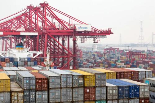 东南亚航线暴涨1000美金!木材进出口市场再迎严峻考验!